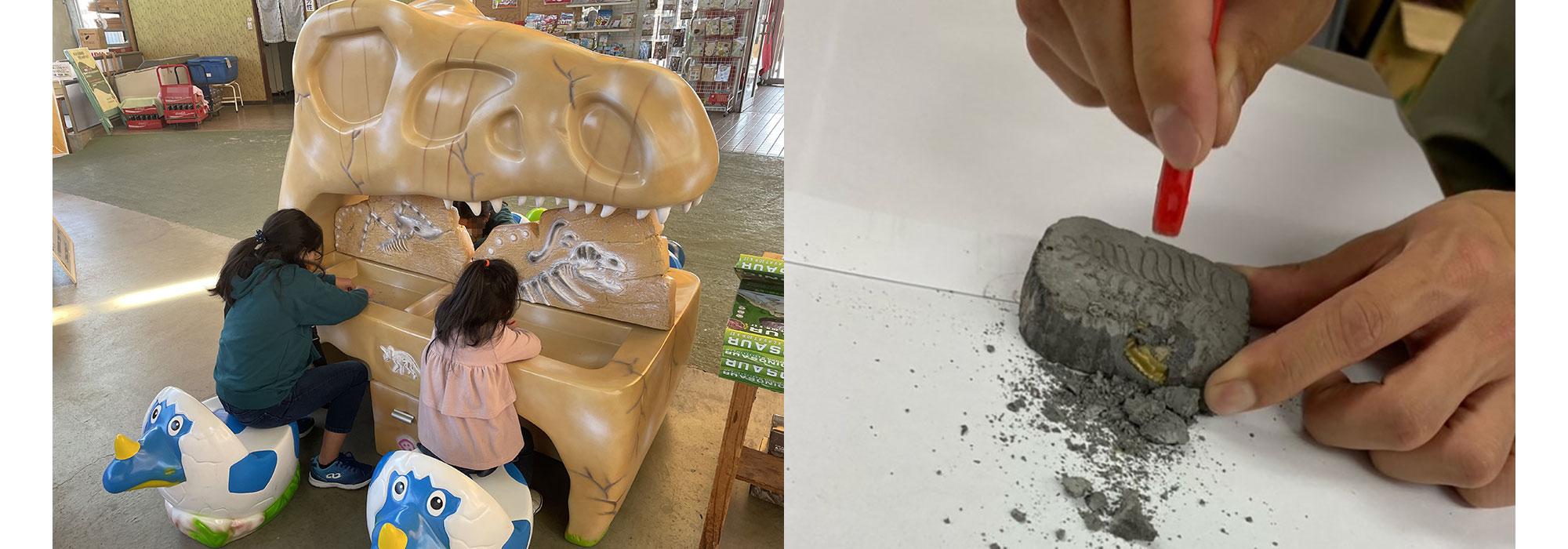 恐竜発掘体験